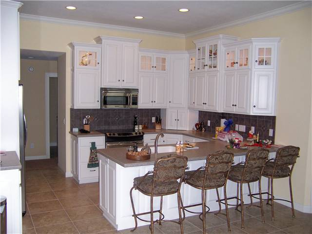 Painted cabinets - raised panel doors and side panels - Standard overlay style - Solid surface countertops