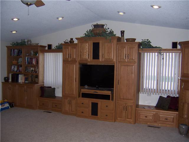 Home theater/bookshelves/storage - stained oak